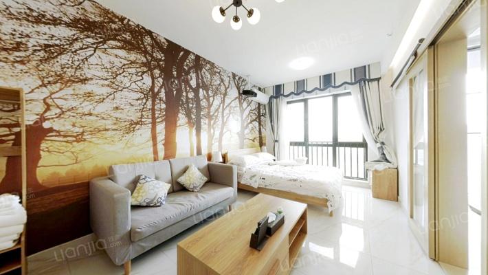 一房一厅的公寓,40年产权,带装修,。。。