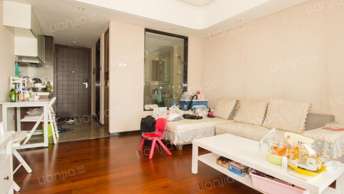 中信红树湾 一房一厅 带超大观景阳台 近关口
